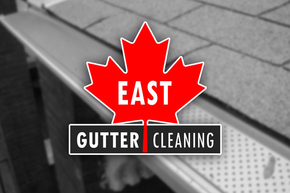 East Gutter Cleaning